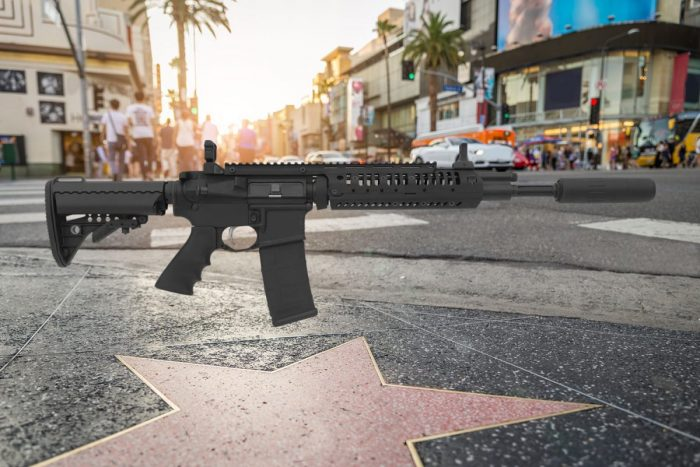 AR-15 in Hollywood